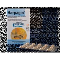 «Харпагин» в таблетках
